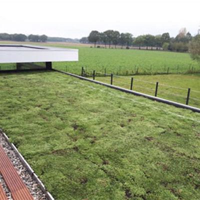 Project 2 platte daken